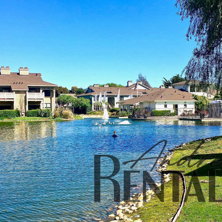 Modern Living on the Richmond Riviera!