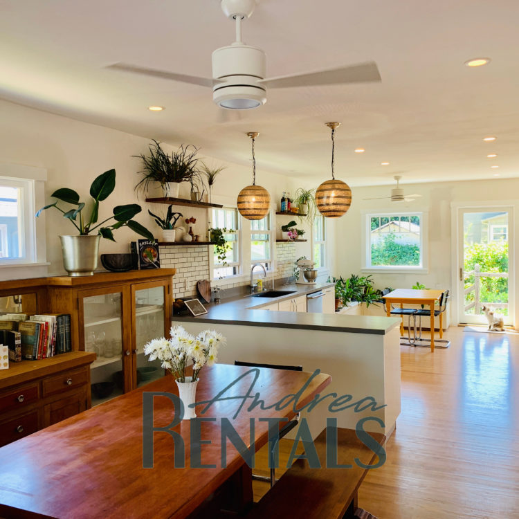Charming 1920s Berkeley Bungalow with magical backyard – walking distance to Ashby BART!!