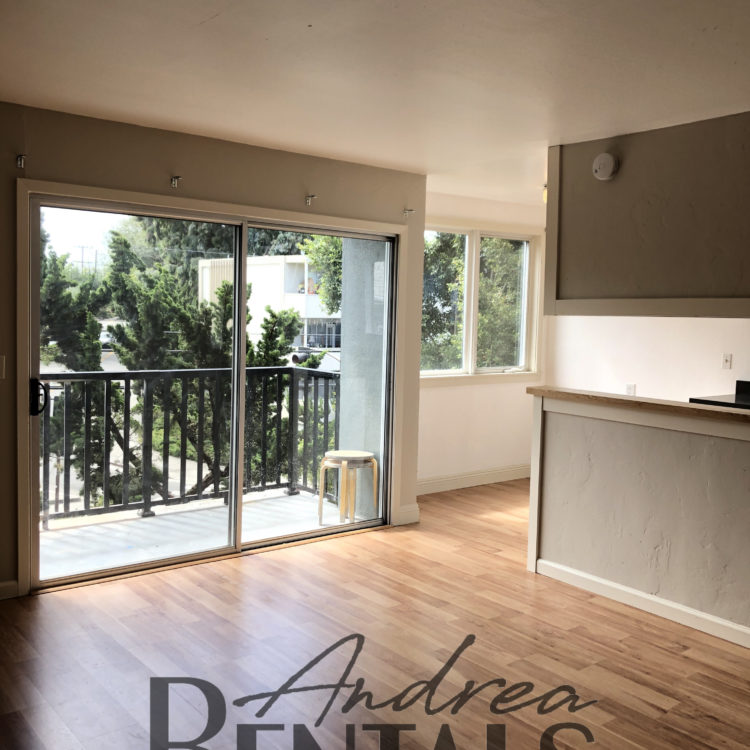 Clean and Sunny 1 Bedroom Apartment in a Newly Retrofitted Building with a New Balcony!