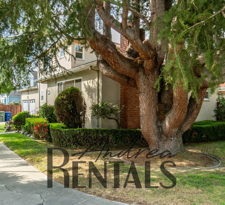 Charming, Sunny 3BD/2.5BA Home in San Leandro!