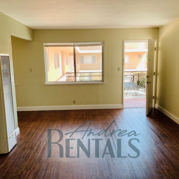 Spacious and clean 1 bedroom,1 bathroom apartment in the rear of a small, well-maintained, retro-cool apartment complex on Ivy Hill.
