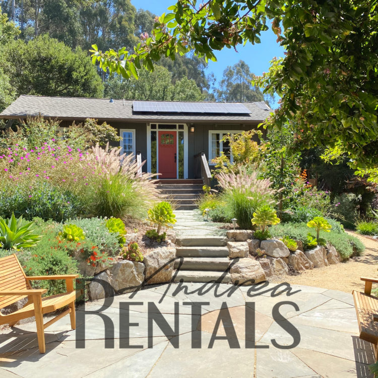 Beautiful, modern 3br/3ba home on a third of an acre in Upper Rockridge, available September 1!