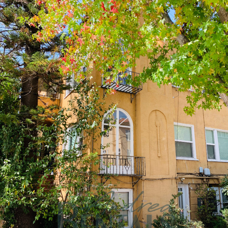 Charming and large ground floor 1bed/1bath unit in convenient Northside Berkeley location!