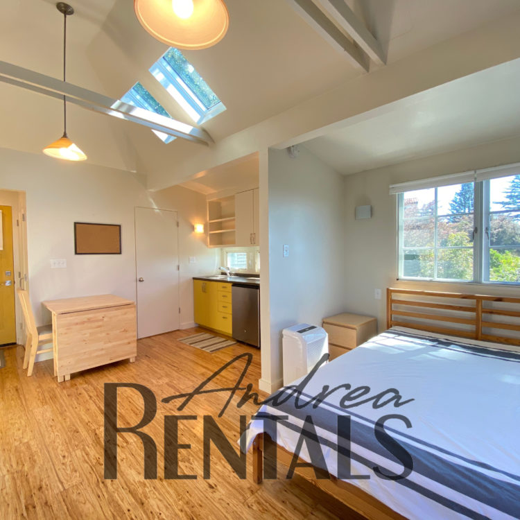 Architect-designed, fully detached studio with sunny deck, yard, and bay views!  Available furnished for October 1.