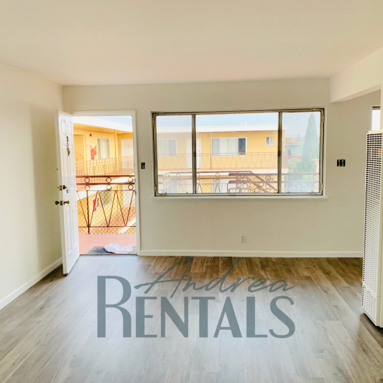 Fully Renovated/ Spacious and clean corner unit 1 bedroom,1 bathroom apartment in the rear of a small, well-maintained, retro-cool apartment complex on Ivy Hill.