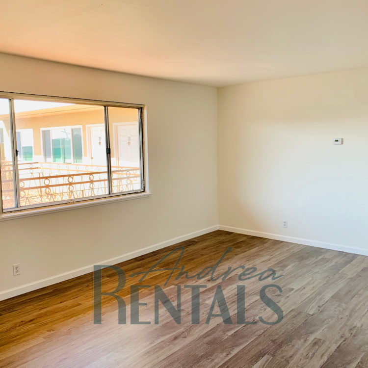 Fully Renovated/ Spacious and clean 1 bedroom,1 bathroom apartment in a retro-cool apartment complex on Ivy Hill.
